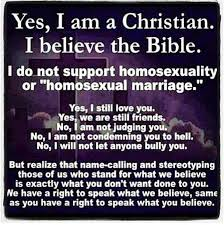 I Am A Christian Quotes Best of Yes I Am A Christian I Believe The Bible Christian Funny