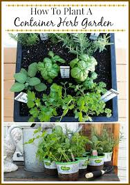 how to plant garden. tips for planting a container herb garden how to plant