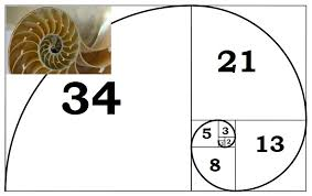 Code Fibo App Fibonacci Trading Sequence Binary Umpire
