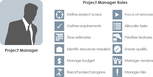 Project Manager Vs Scrum Master Vs Project Owner