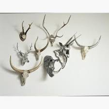 wall antlers wall art luxury inspiration antler wall decor with deer decorations photo pic home ideas