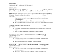 Resume For First Job High School Employment Resume Template Example For Graduate With 77