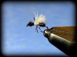 Ant Fly Patterns Fascinating Fly Tying CDC Flying Ant YouTube