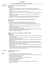Inside Sales Account Manager Resume Samples Velvet Jobs