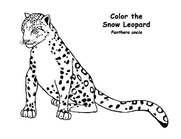 Snow Leopard Coloring Pages Awesome Drawing At Getdrawings Of