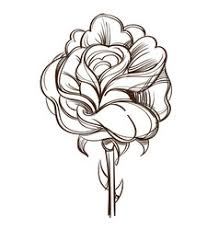 Small Picture Hand drawn rose flower Royalty Free Vector Image