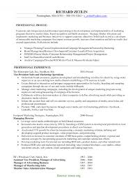 Executive Marketing Director Resume Typical Marketing Director Resume Objective Executive Director 24
