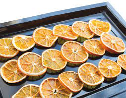 Meyve ve Sebze Kurutma Tesisi