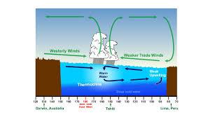 What Unusual Pattern Occurs During El Niño Stunning Explainer El Niño And La Niña Science News For Students