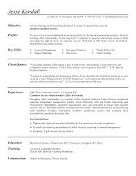Resume Objective For Customer Service Resume Objectives For Customer