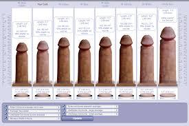 Pornstar average penis size
