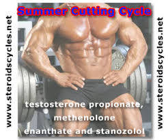 testosterone propionate only cycle results