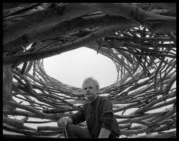 Image result for andy goldsworthy portrait