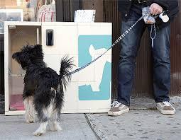 Dog Park Vending Machines Mesmerizing Dog Parking