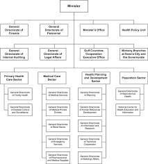 7 Organizational Chart Of Portugal U S Ministry Of Health
