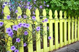 fence garden ideas. a pale yellow perimeter fence with trees and light purple flowers peeping through wrapped around garden ideas e