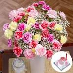 Birthday Flower Gift   Birthday Flowers Gifts UK   Bunches.co.uk