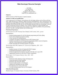 100 Sample Developer Resume Vba Developer Resume Free