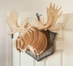 moose trophy finished