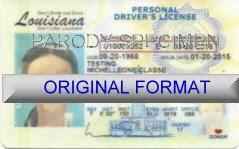 Fake Id Id Florida Card Template Novelty Ake r6rpgy1cA