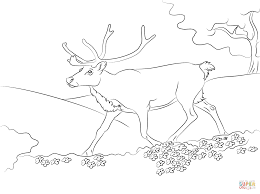 Small Picture Cartoon Reindeer coloring page Free Printable Coloring Pages