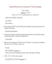 Sample Resume Project Manager It Project Manager Resume Sample