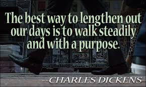 Quotes About Walking Gorgeous Walking Quotes