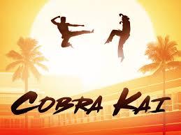 Amazon.de: Cobra Kai - Staffel 1 [dt./OV] ansehen