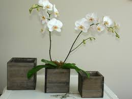 goose decorative planter box wood large
