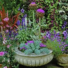 container gardening. A Few Container Gardening Basics