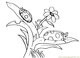 Small Picture Ladybug flower Coloring Page Free ladybugs Coloring Pages