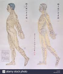 Chinese Chart Of Acupuncture Points On Two Profiles Of A