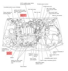 2004 nissan maxima engine wiring diagram 2004 nissan qr20 engine diagram nissan wiring diagrams on 2004 nissan maxima engine wiring diagram