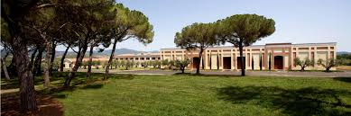 Image result for Rocca di Montemassi- museum of ancient wine tasting
