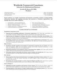 Examples Of Resume Summary Statement. Resume Summary Statements ...