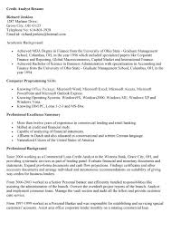 Credit Analyst Resume Sample Www Freewareupdater Com