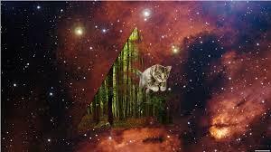 Cats in space • r/spacecats 4K - Best ...