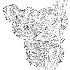 Poster Zentangle Stilizzato Orso Koala Cartone Animato Isolato Su Sfondo