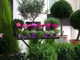 Small Picture Small Balcony Garden Design Latest Find This Pin And More On
