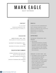 Professional Resume Examples 2017 66 Images Sample For Strong Mil