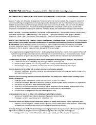 samples quantum tech resumes it director sample resume kaylee frye gallery of cio sample resume