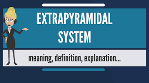 what does extrapyramidal system mean