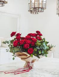 Red Bliss Design Love The Red Rose No Vase Please Premier
