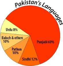 Languages Spoken In India Pie Chart South Asia