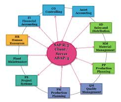 A General Overview of SAP Modules SAP Training Tutorials Different... |  Download Scientific Diagram