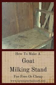 how to make a goat milking stand for or cheap farming my how to make a goat milking stand for or cheap
