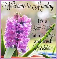 Good Morning Monday Quotes Gorgeous Welcome To Monday Its A New Week Have A Wonderful Day No Pin