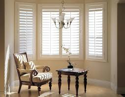 Window Blind Ideas For Living Room Blinds Bay Euskal Net Decoration Windows  On Category Withblinds Ikea