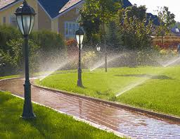 Image result for work with the sprinkler company you choose