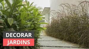 Essa é uma planta que precisa de sol e calor. Jardim 2 000 Ideias E Fotos De Decoracao De Jardim Viva Decora